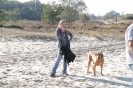 Wandeling 16-10-2011_40